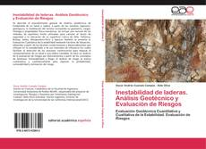 Bookcover of Inestabilidad de laderas. Análisis Geotécnico y Evaluación de Riesgos