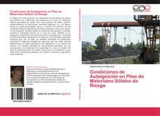 Bookcover of Condiciones de Autoignición en Pilas de Materiales Sólidos de Riesgo