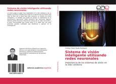 Sistema de visión inteligente utilizando redes neuronales kitap kapağı