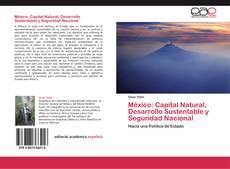 Couverture de México: Capital Natural, Desarrollo Sustentable y Seguridad Nacional