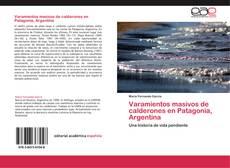 Buchcover von Varamientos masivos de calderones en Patagonia, Argentina