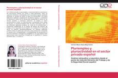 Buchcover von Pluriempleo y pluriactividad en el sector privado español