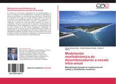 Portada del libro de Modelación morfodinámica de desembocaduras a escala intra-anual