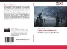 Bookcover of Figuras en la bruma