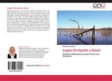 Bookcover of Lagos Enriquillo y Azuéi