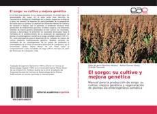 Copertina di El sorgo: su cultivo y mejora genética
