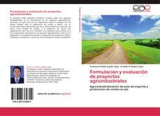 Bookcover of Formulación y evaluación de proyectos agroindustriales