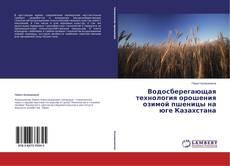 Водосберегающая технология орошения озимой пшеницы на юге Казахстана的封面