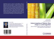 Bookcover of Intercropping of Maize (Zea mays L.) and Legumes