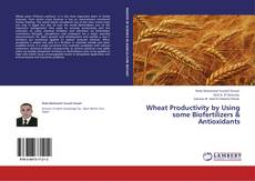 Bookcover of Wheat Productivity by Using some Biofertilizers & Antioxidants