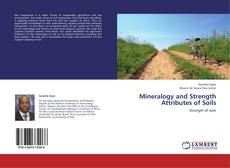 Bookcover of Mineralogy and Strength Attributes of Soils