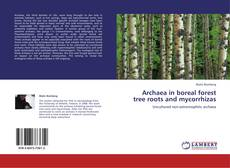 Обложка Archaea in boreal forest tree roots and mycorrhizas