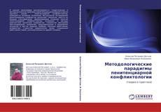 Bookcover of Методологические парадигмы пенитенциарной конфликтологии