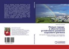Малые города      в обеспечении устойчивого развития сырьевого региона kitap kapağı