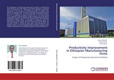 Bookcover of Productivity Improvement in Ethiopian Manufacturing Firms