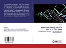 Bookcover of Quantum many-particle electron transport