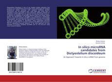 Capa do livro de In silico  microRNA candidates from  Dictyostelium discoideum