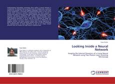 Buchcover von Looking Inside a Neural Network