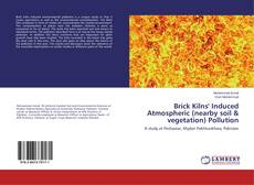 Bookcover of Brick Kilns' Induced Atmospheric (nearby soil & vegetation) Pollution
