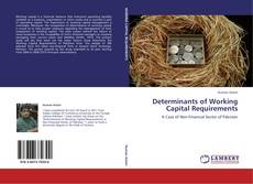 Bookcover of Determinants of Working Capital Requirements