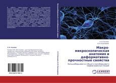Обложка Макро-микроскопическая анатомия и деформативно-прочностные свойства