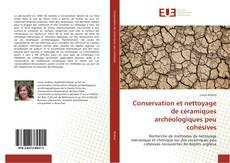 Conservation et nettoyage de céramiques archéologiques peu cohésives的封面