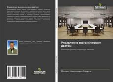 Bookcover of Управление экономическим ростом