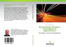 Bookcover of Космическая погода и ионосферные радиоволны