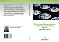 Обложка Острая суправезикальная обструкция мочевых путей