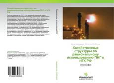 Bookcover of Хозяйственные структуры по рациональному использованию ПНГ в НГК РФ