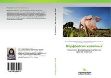 Обложка Морфология животных