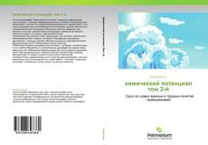 Capa do livro de химический потенциал  том 2-й