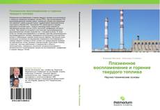 Bookcover of Плазменное воспламенение и горение твердого топлива