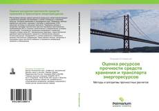Bookcover of Оценка ресурсов прочности средств хранения и транспорта энергоресурсов