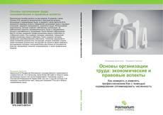 Buchcover von Основы организации труда: экономические и правовые аспекты
