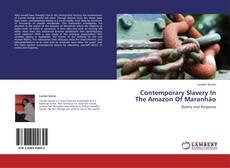 Borítókép a  Contemporary Slavery In The Amazon Of Maranhão - hoz