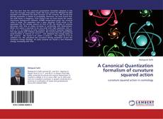 Bookcover of A Canonical Quantization formalism of curvature squared action