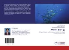 Borítókép a  Marine Biology - hoz