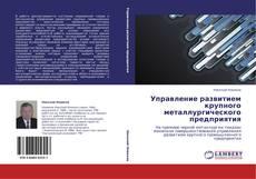 Bookcover of Управление развитием крупного металлургического предприятия