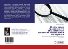 Обеспечение прозрачности общественных финансов в Российской Федерации kitap kapağı