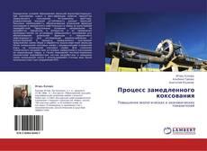 Bookcover of Процесс замедленного коксования