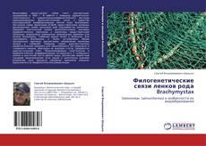 Bookcover of Филогенетические связи ленков рода Brachymystax