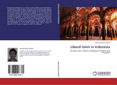 Обложка Liberal Islam in Indonesia