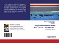 Bookcover of Geopolymer Composite for High Temperature Exposure