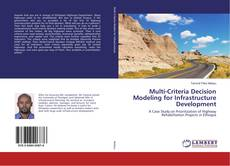 Buchcover von Multi-Criteria Decision Modeling for Infrastructure Development