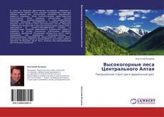 Высокогорные леса Центрального Алтая的封面