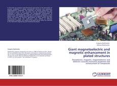 Buchcover von Giant magnetoelectric and magnetic enhancement in plated structures