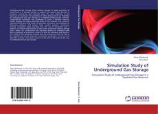 Copertina di Simulation Study of Underground Gas Storage