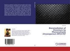 Bookcover of Bioremediation of Chromium by Phanerochaete chrysosporium MTCC787
