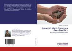 Bookcover of Impact of Micro-finance on Asset Creation: